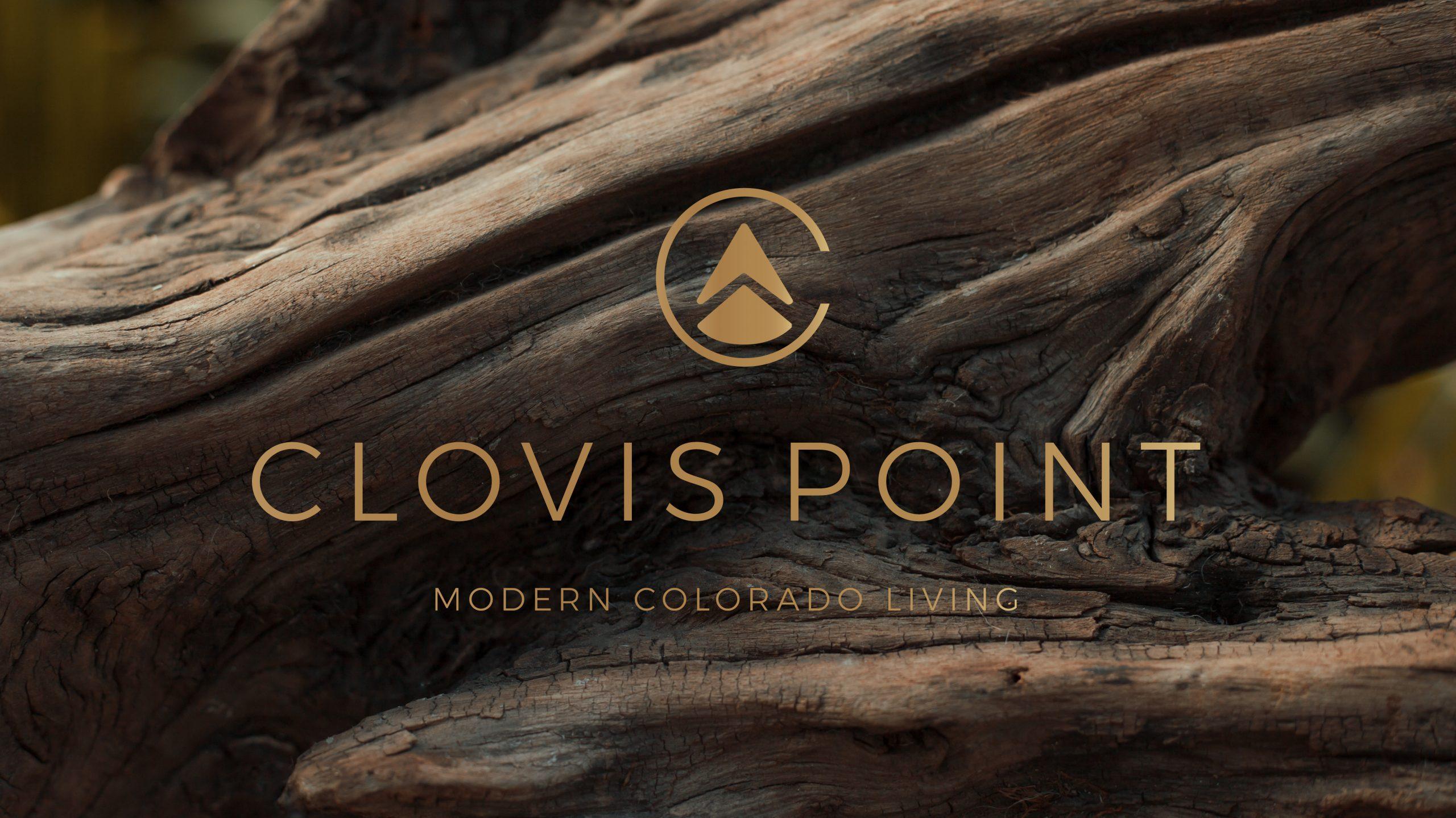 Clovis Point