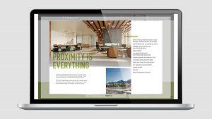 Timber Brochure - Apres Creative